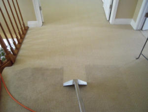 little rock ar carpet cleaning with a steam cleaner